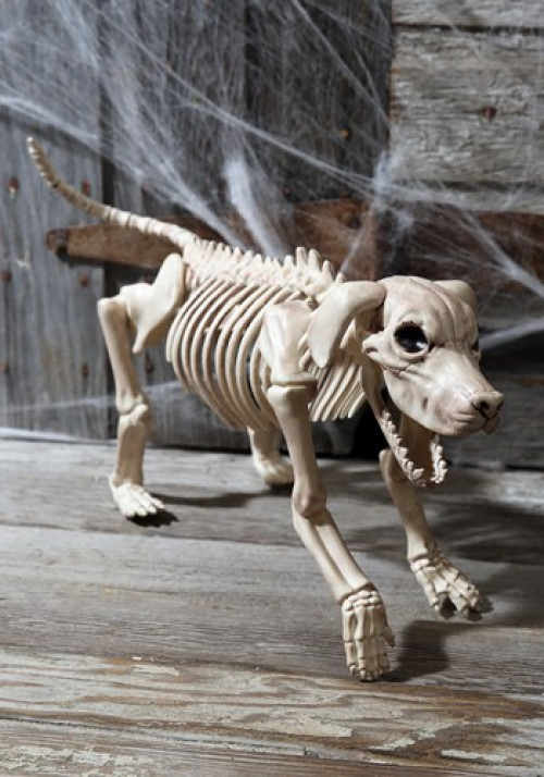 This Beagle Bonez decoration shows what happens when Fido becomes a cursed creature of the damned! #%20