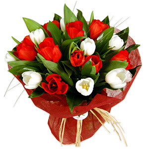 Nothing can beat a bunch of tulips fresh from the fields into the arms of your beloved. #gift