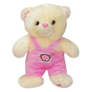 This extremely cute Bear in a Pink Jumper makes for the perfect gift to give to someone who adores stuffed toys. This cute and lovable 11 inch Bear with an embroidered motif of a baby teddy will be the perfect companion for a toddler or a special loved on #gift
