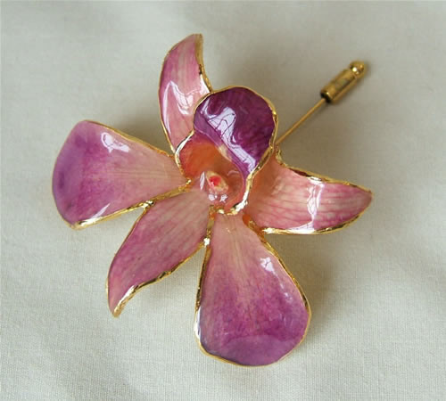 Picked at the peak of its natural perfection, a lush, exotic orchid blossom gives this Pink and Purple Dendrobium Orchid brooch its ethereal beauty. Each delicate, vibrant flower is skillfully preserved in lacquer and trimmed with touches of 24K gold. The #gift